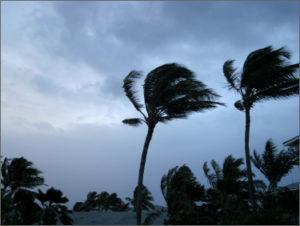 Fema Says Modular Homes Safer in Hurricane